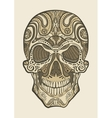 Decorative isolated human skull vector image vector image