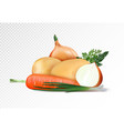 fresh vegetables on the transsparent background vector image vector image