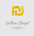Golden Sheqel Symbol vector image vector image