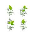 herbal green tea collection line art logo vector image vector image