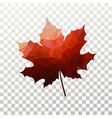maple leaf with red triangles texture tree vector image