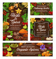 spices culinary herbs and fresh food seasonings vector image