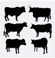 Cow and bull animal silhouette vector image vector image