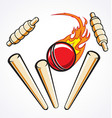 cricket wicket stumps flaming ball out vector image vector image