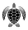 graphic sea turtle swimming vector image