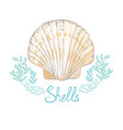 hand drawn - collection of seashells marine set vector image