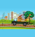 many wild animal on the truck vector image vector image