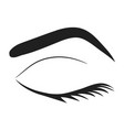 silhouette of eye lashes and eyebrow stock vector image