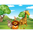 Wild animals on the field vector image vector image