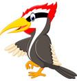 woodpecker bird cartoon vector image