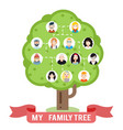 avatars family tree father mother grandfather vector image
