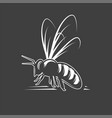 bee isolated on black background vector image