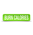 burn calories green 3d realistic square isolated vector image vector image