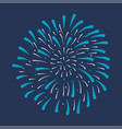 firework festive bursting vector image