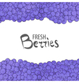 Fresh blueberries vector image vector image