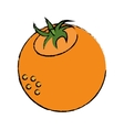 fresh orange fruit nature drawing vector image vector image