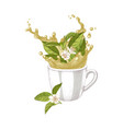hand drawn cup with splash and falling tea plant vector image vector image