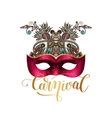 mask silhouette with ornamental floral feather and vector image vector image