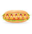 real hot dog sausage with sauce in a bread vector image