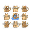 set of cat emoticons vector image