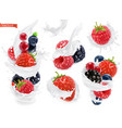 forest fruit yogurt mixed berry and milk splashes vector image