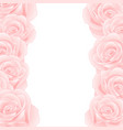 pink rose border vector image vector image