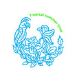 round symbol cute parrot tropical summer jungle vector image