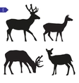silhouettes of deer vector image vector image