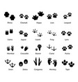 animals and birds feet tracks trails set vector image vector image