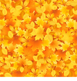 Autumn background of leaves vector image vector image