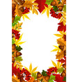 autumn frame of fall season leaf acorn and berry vector image