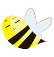chineese bumblebee on white background vector image vector image