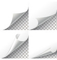 Curl paper corners set on transparent vector image vector image