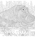 hippopotamus hippo adult coloring page vector image