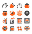 persimmon icon set vector image vector image