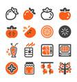 persimmon icon set vector image