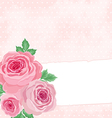 Pink background with roses vector image vector image