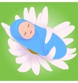 Sleeping babe in Daisy vector image