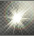 sunlight special lens flare light effect light vector image vector image