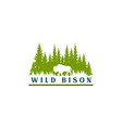 wild bison and pine forest silhouette logo vector image