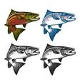 Fishing emblems labels and design elements vector image