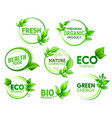 eco bio organic product icons with green leaves vector image vector image