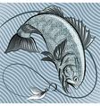 fish in grey vector image