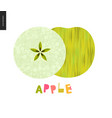 food patterns fruit green apple vector image