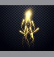 gold festive fireworkssparkling comets holiday vector image