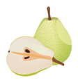Isolated pears vector image vector image