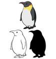 set penguin cartoon vector image