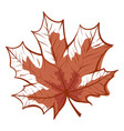 autumn fall maple leaf bright seasonal decoration vector image