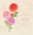 bouquet of lovely chrysanthemums on a background vector image