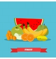 Fruits food products in flat vector image vector image